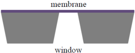 Membranes- Side view